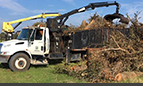 Storm Debris Collection Contract Granted to Ceres Environmental